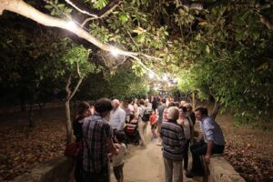 immagine del bosco giardino di tiggiano