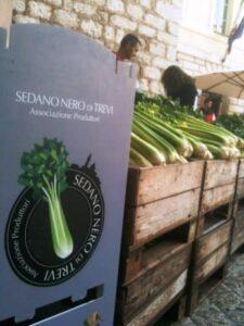 locandina Mostra Mercato del Sedano nero e 55esima Sagra del Sedano e salsiccia 2019